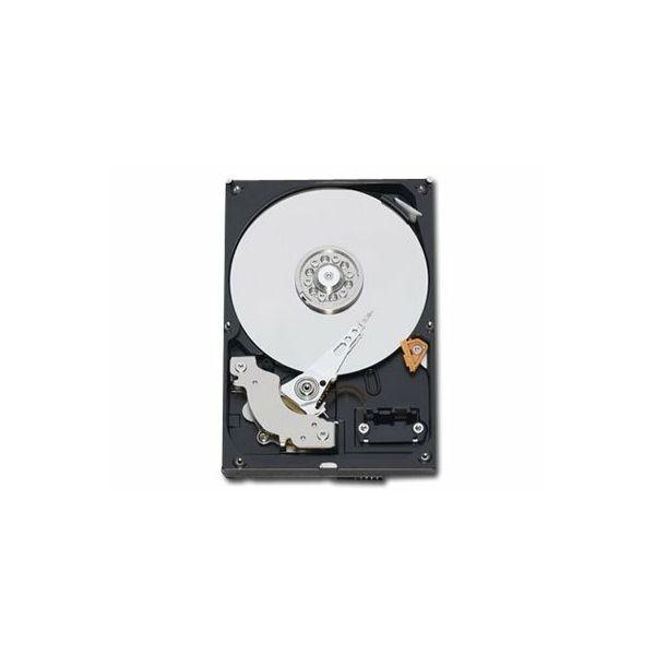 WESTERN DIGITAL HDD Desktop Caviar Blue (3.5